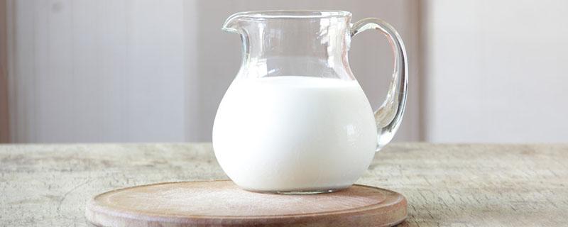 鹦鹉可以喝牛奶吗